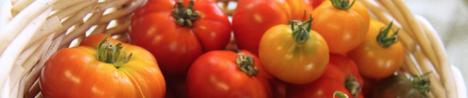 img_feature_tomatoes_basket